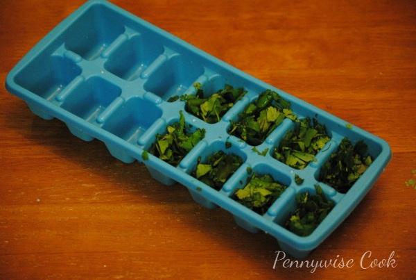 Cilantro 31 Frugal Kitchen Tip: Freezing Fresh Herbs