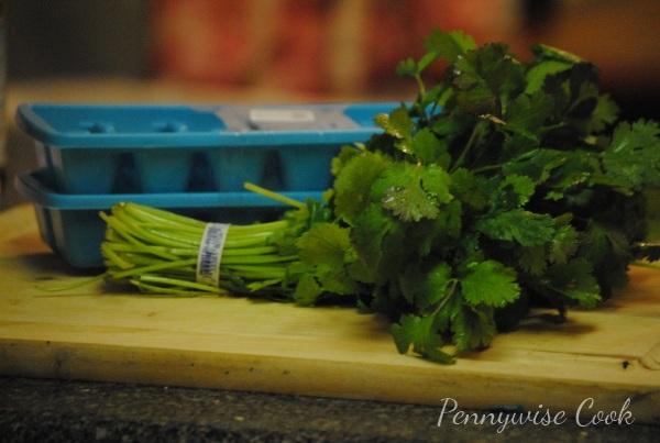 Cilantro1 Frugal Kitchen Tip: Freezing Fresh Herbs