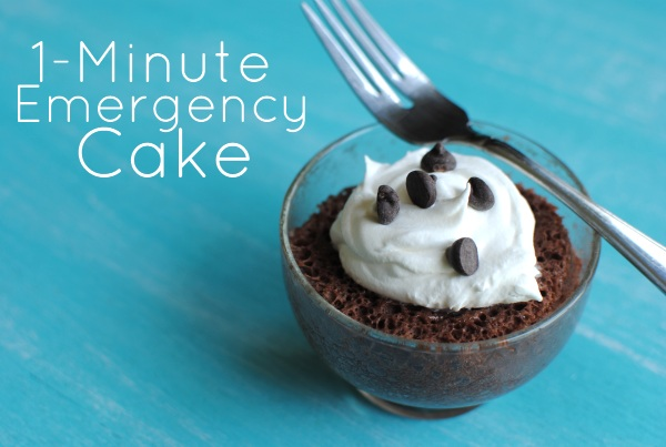 Emergency Cake 1 1 Minute Emergency Cake